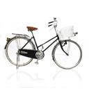 จักรยานทั่วไป/จักรยานไฟฟ้า